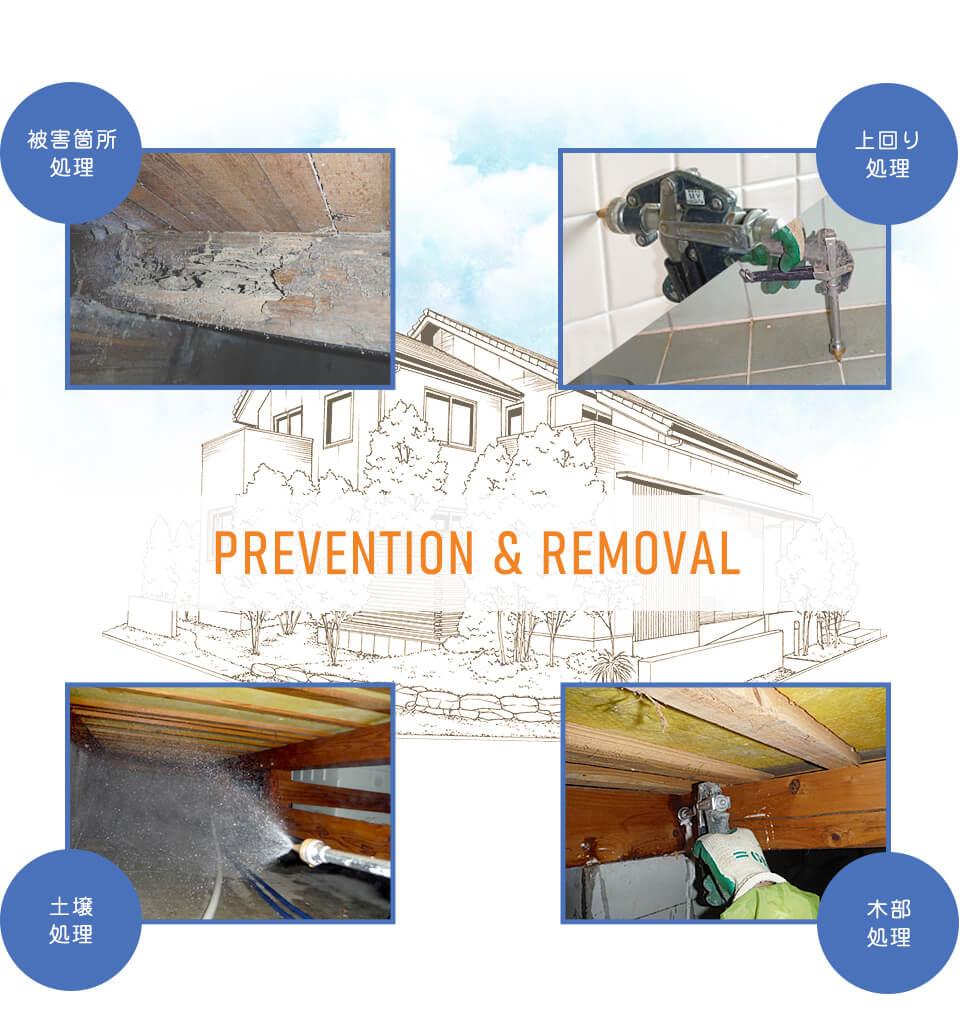 img_prevention